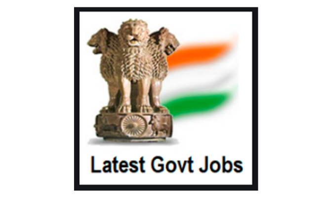 Image result for government jobs